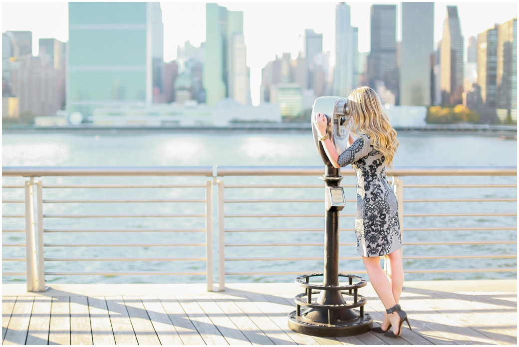 Lic Wedding Photographer New York City Nyc Engagement Proposal
